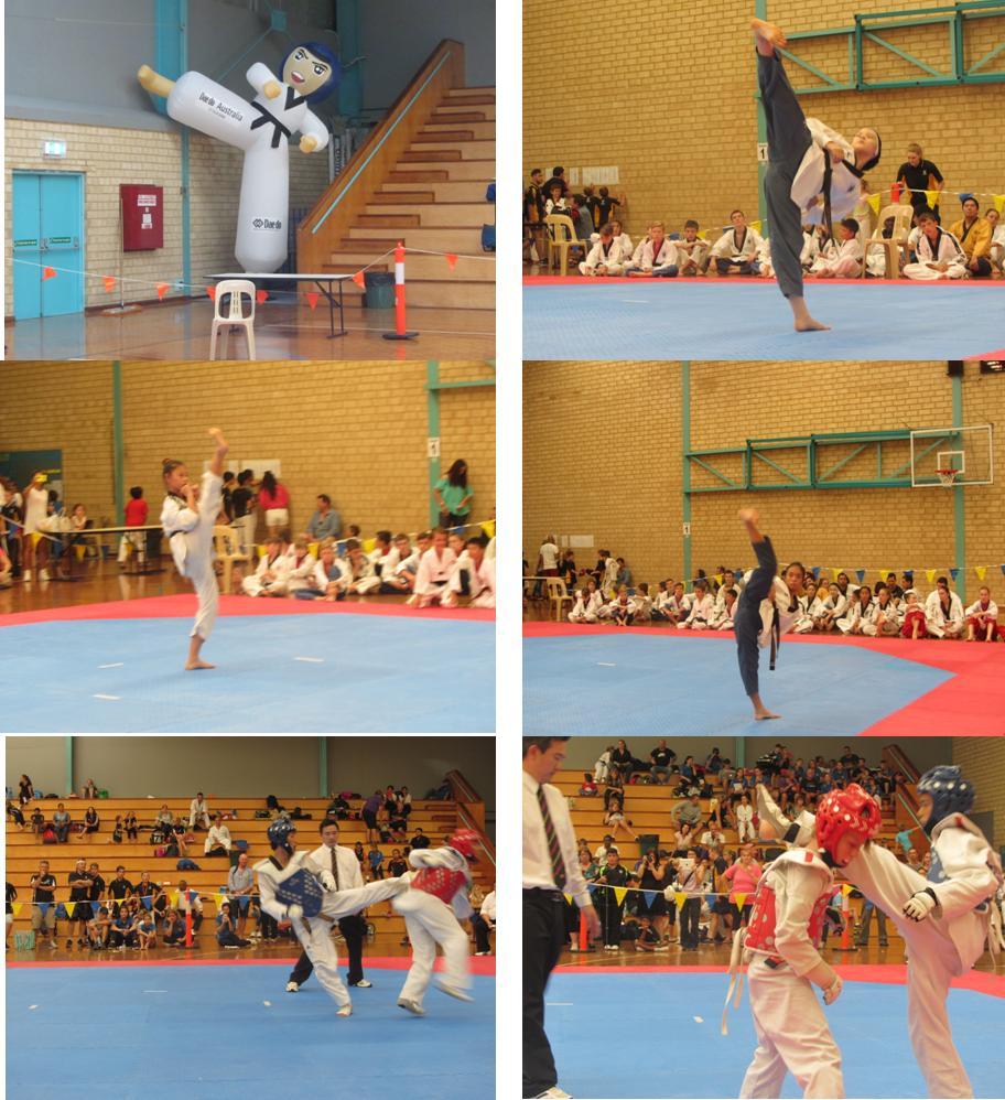 black belt thesis tae kwon do